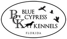 Blue Cypress Kennels