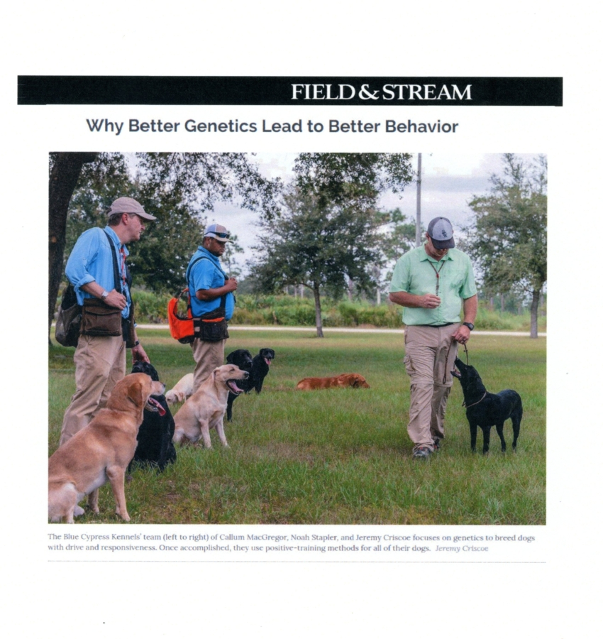 Field and Stream – edited page 3