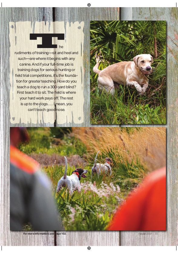 grays-journal-page-8